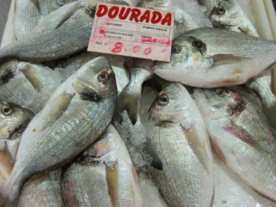 Portugal, Évora, mercado velho, dourada, fish, peixe