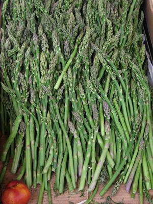 Spain, España, San Sebastián, Donostia, esparragos, asparagus