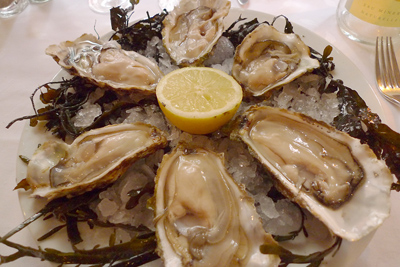 France, Euskal Herria, Kaiku, St. Jean-de-Luz, oysters on the half shell