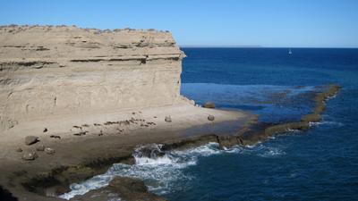 Argentina, Península Valdés, Puerto Pirámide, sea lions