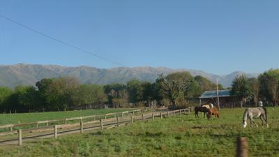 Argentina, Salta, Campo Quijano
