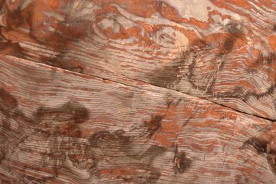 Jordan, Petra, Urn tomb interior