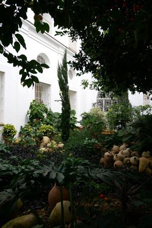 España, Spain, Sevilla, Jesuit, San Luis de los Franceses, Baroque, patio